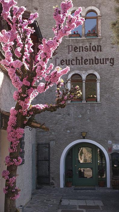 NewTec Lautsprecher Hotel Leuchtenburg Kaltern